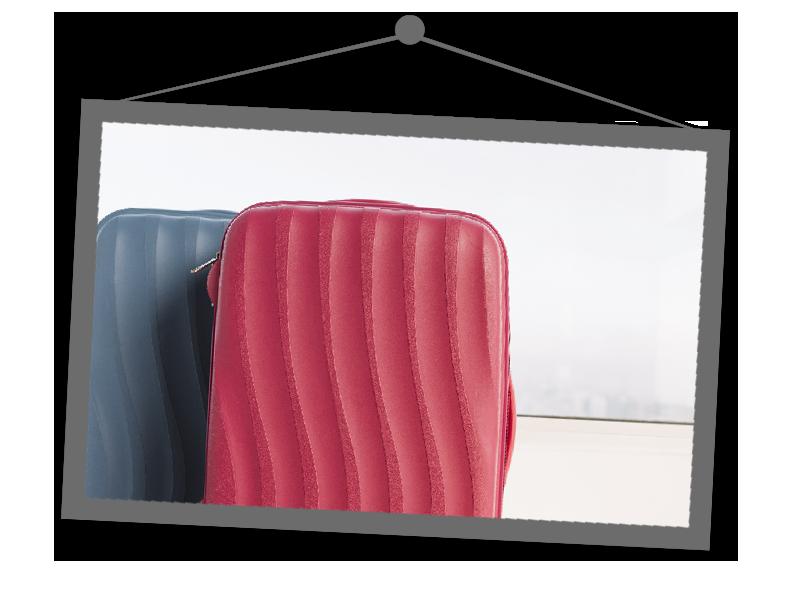 Luggage Case Storage Services